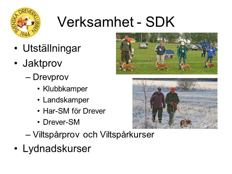 Svenska Dreverklubben Organisation - Centralstyrelse - 24 st lokalklubbar - 2 600 st medlemmar Möten - Dreverstämman - Årsmöten i resp. lokalklubb