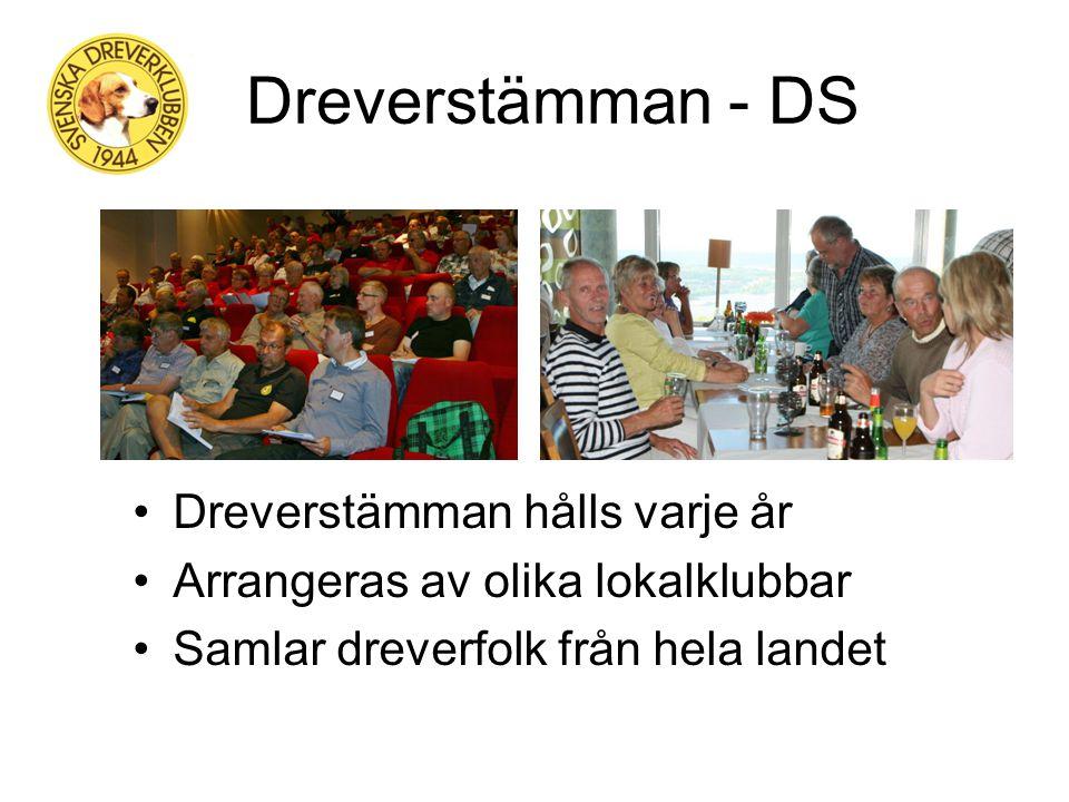 Medlem - SDK Rätt att starta på drevprov och utställningar Lydnads- och Viltspårkurser samt Viltspårprov Dreverboken skickas ut till alla medlemmar Sp
