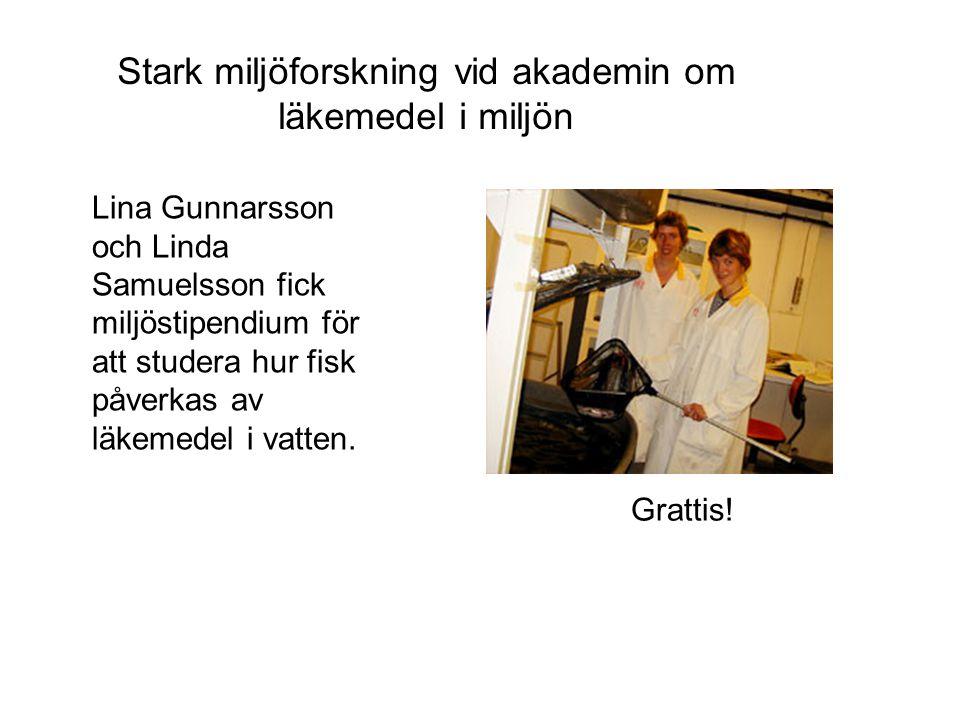 Lina Gunnarsson och Linda Samuelsson fick miljöstipendium för att studera hur fisk påverkas av läkemedel i vatten. Stark miljöforskning vid akademin o