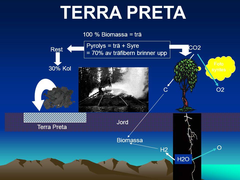 Jord Pyrolys = trä + Syre = 70% av träfibern brinner upp 30% Kol 100 % Biomassa = trä Rest Terra Preta CO2 H2O Foto syntes CO2 H2 O Biomassa TERRA PRE