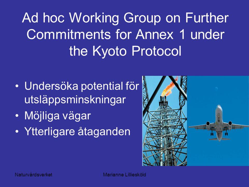 NaturvårdsverketMarianne Lilliesköld Ad hoc Working Group on Further Commitments for Annex 1 under the Kyoto Protocol Undersöka potential för utsläppsminskningar Möjliga vägar Ytterligare åtaganden