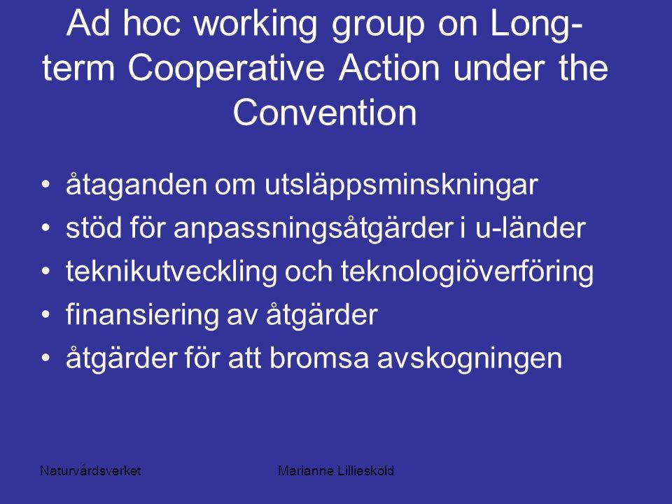 NaturvårdsverketMarianne Lilliesköld Ad hoc working group on Long- term Cooperative Action under the Convention åtaganden om utsläppsminskningar stöd för anpassningsåtgärder i u-länder teknikutveckling och teknologiöverföring finansiering av åtgärder åtgärder för att bromsa avskogningen