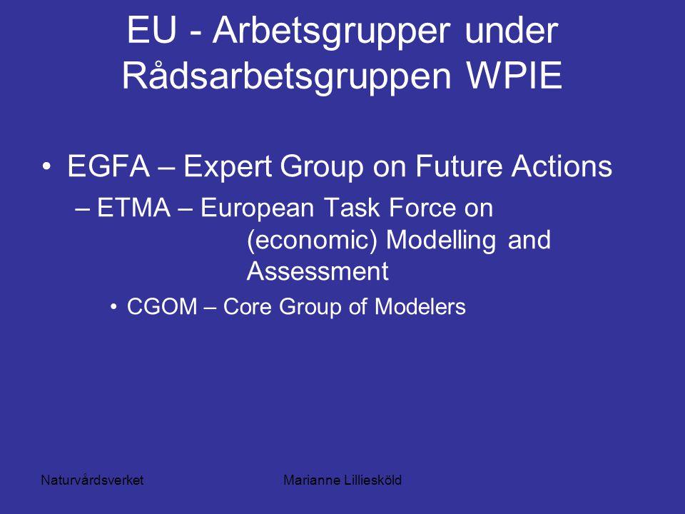 NaturvårdsverketMarianne Lilliesköld EU - Arbetsgrupper under Rådsarbetsgruppen WPIE EGFA – Expert Group on Future Actions –ETMA – European Task Force on (economic) Modelling and Assessment CGOM – Core Group of Modelers