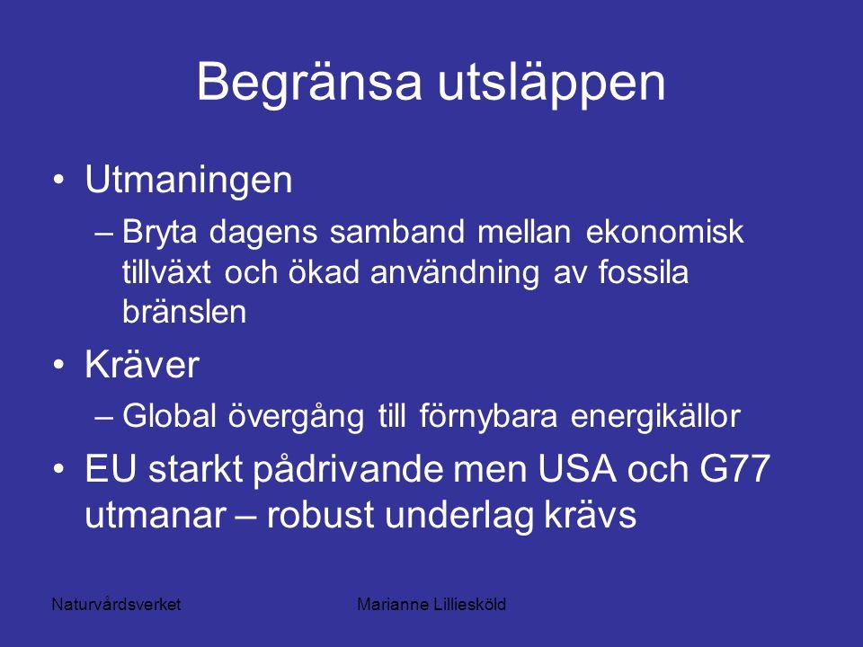 NaturvårdsverketMarianne Lilliesköld Begränsa utsläppen Utmaningen –Bryta dagens samband mellan ekonomisk tillväxt och ökad användning av fossila bränslen Kräver –Global övergång till förnybara energikällor EU starkt pådrivande men USA och G77 utmanar – robust underlag krävs