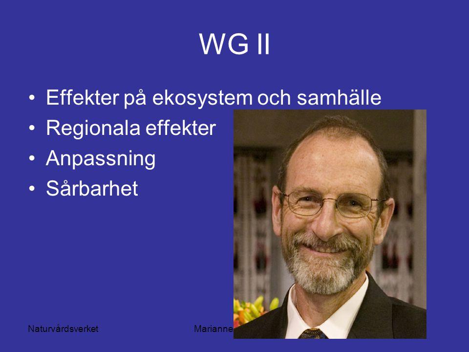 NaturvårdsverketMarianne Lilliesköld WG II Effekter på ekosystem och samhälle Regionala effekter Anpassning Sårbarhet