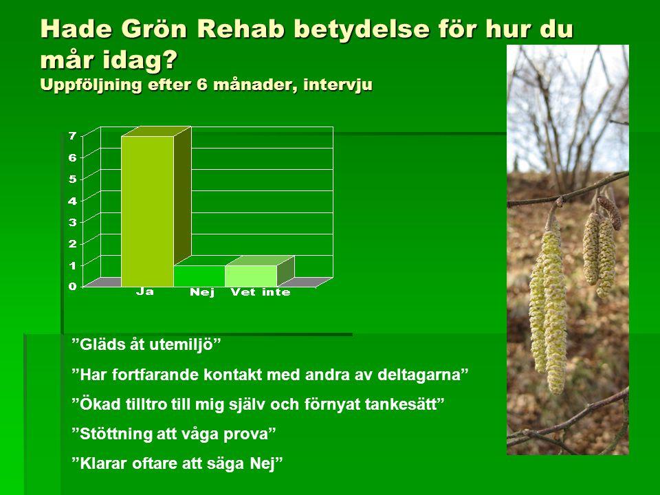 """Hade Grön Rehab betydelse för hur du mår idag? Uppföljning efter 6 månader, intervju """"Gläds åt utemiljö"""" """"Har fortfarande kontakt med andra av deltaga"""