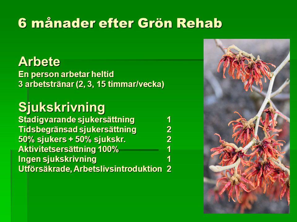 6 månader efter Grön Rehab Arbete En person arbetar heltid 3 arbetstränar (2, 3, 15 timmar/vecka) Sjukskrivning Stadigvarande sjukersättning 1 Tidsbeg