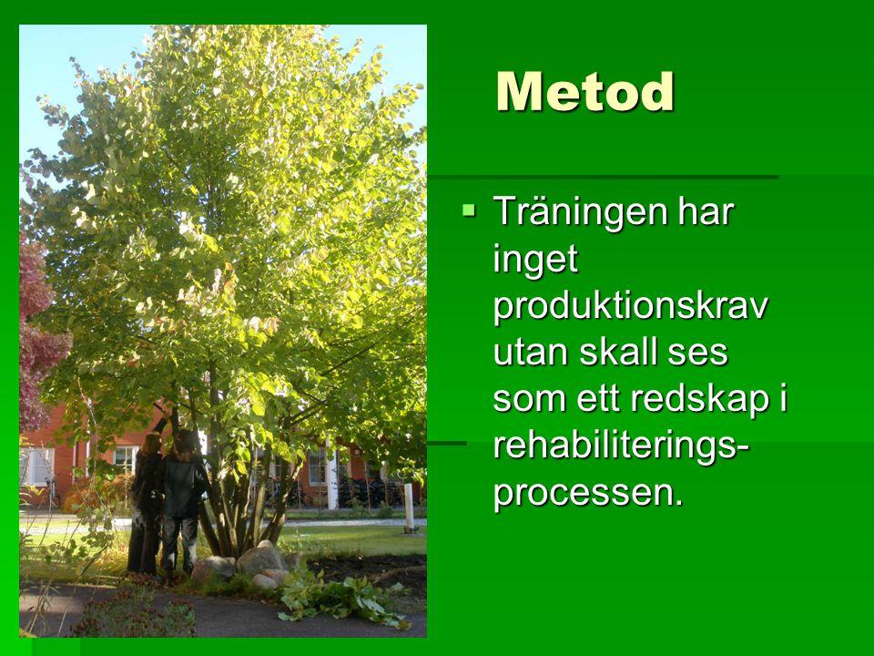 Metod  Träningen har inget produktionskrav utan skall ses som ett redskap i rehabiliterings- processen.