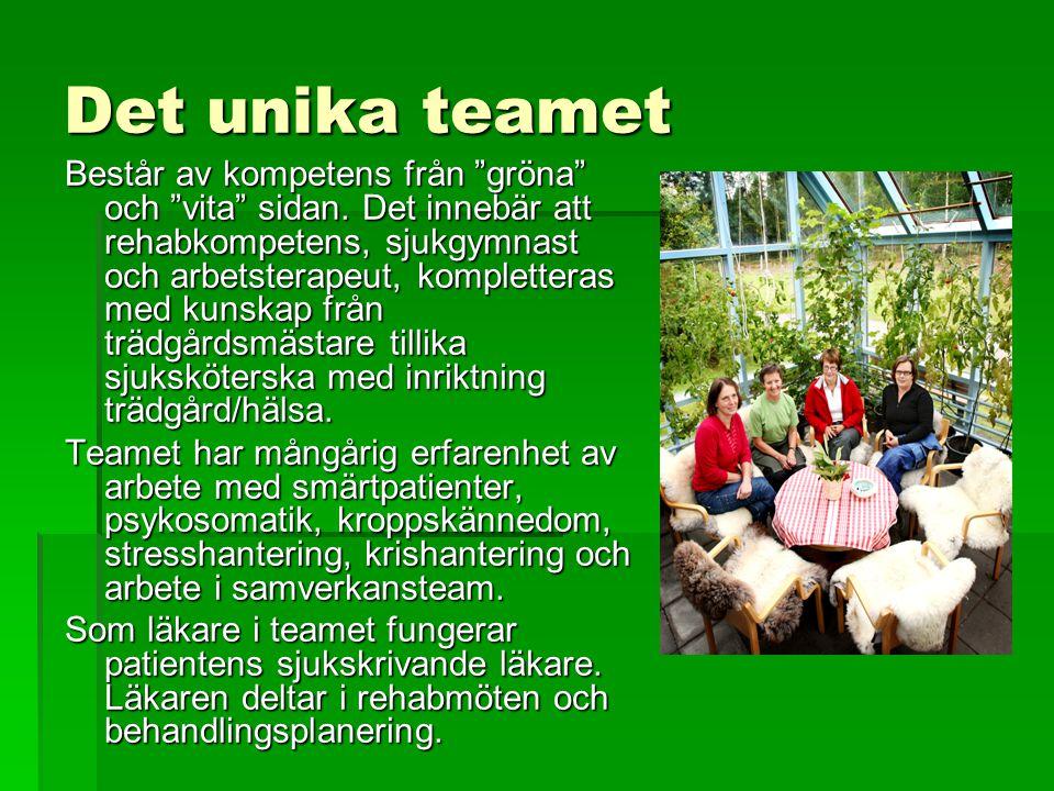 """Det unika teamet Består av kompetens från """"gröna"""" och """"vita"""" sidan. Det innebär att rehabkompetens, sjukgymnast och arbetsterapeut, kompletteras med k"""