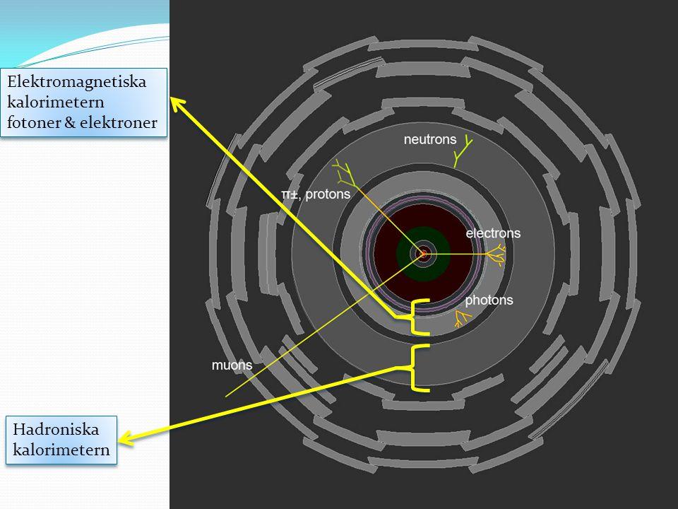 Elektromagnetiska kalorimetern fotoner & elektroner Elektromagnetiska kalorimetern fotoner & elektroner Hadroniska kalorimetern Hadroniska kalorimeter