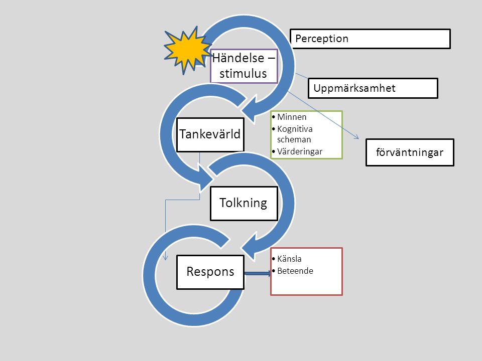 Uppmärksamhet Perception Händelse – stimulus Minnen Kognitiva scheman Värderingar Tankevärld Tolkning Känsla Beteende Respons förväntningar
