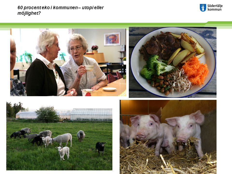 www.sodertalje.se 2 EVENTUELL VINJETT Nuläge övergripande 50% ekologiska livsmedelsinköp på kommunens skolor Alla kök är KRAV-certifierade Ökat utbud av antal maträtter till lunch/middag Minimal användning av hel och halvfabrikat Maximal användning av kött producerat i linje med svensk lagstiftning ( 71%) Minskad köttkonsumtion med 9% mellan 2009 och 2011.