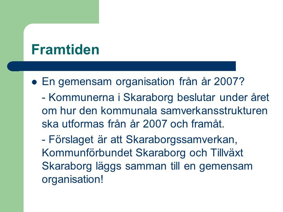 Framtiden En gemensam organisation från år 2007.
