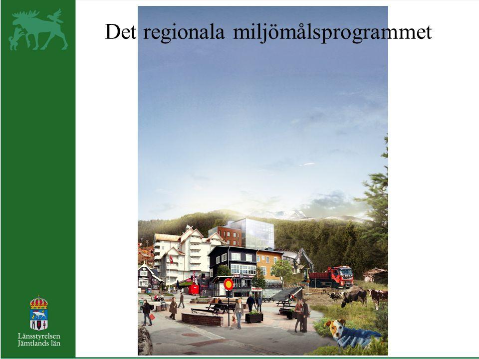 Det regionala miljömålsprogrammet