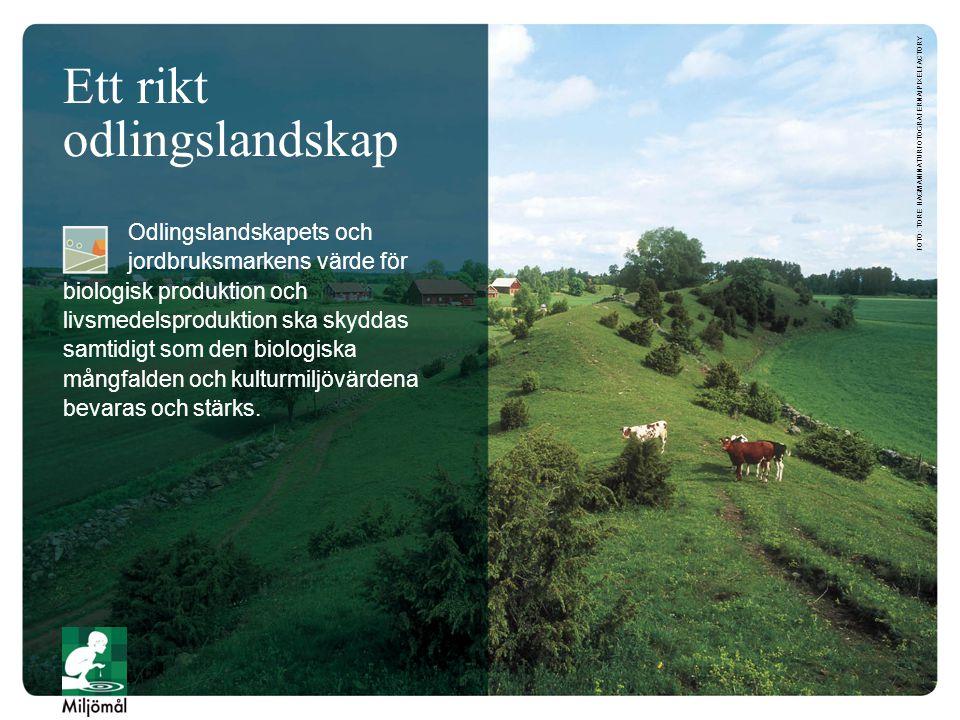 Ett rikt odlingslandskap Odlingslandskapets och jordbruksmarkens värde för biologisk produktion och livsmedelsproduktion ska skyddas samtidigt som den