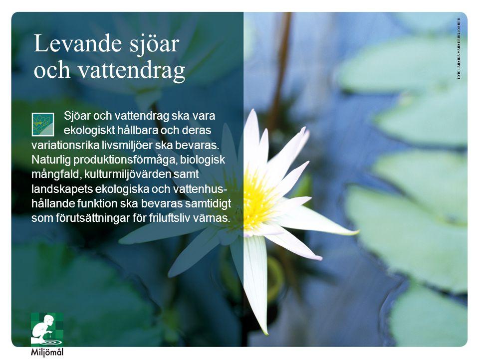 Levande sjöar och vattendrag Sjöar och vattendrag ska vara ekologiskt hållbara och deras variationsrika livsmiljöer ska bevaras. Naturlig produktionsf