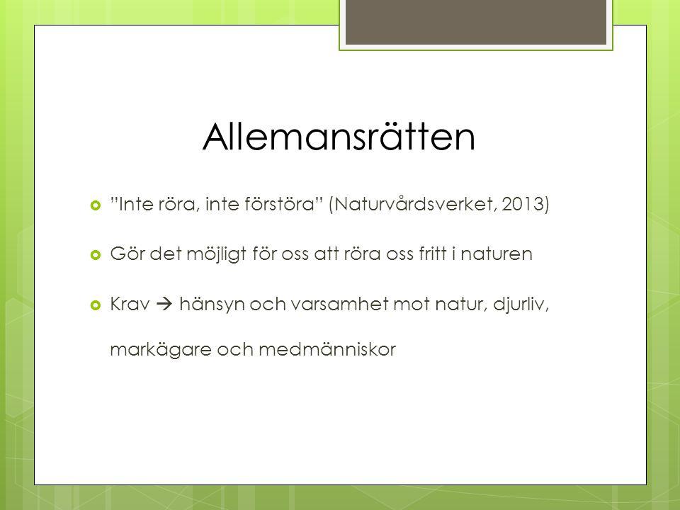 """Allemansrätten  """"Inte röra, inte förstöra"""" (Naturvårdsverket, 2013)  Gör det möjligt för oss att röra oss fritt i naturen  Krav  hänsyn och varsam"""