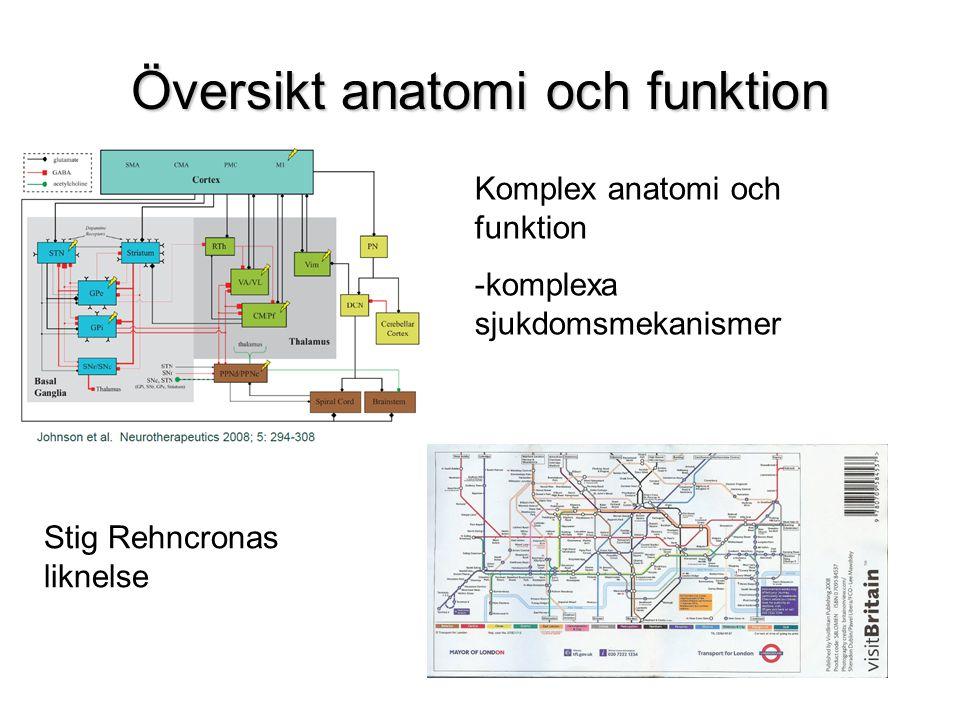 Översikt anatomi och funktion Komplex anatomi och funktion -komplexa sjukdomsmekanismer Stig Rehncronas liknelse
