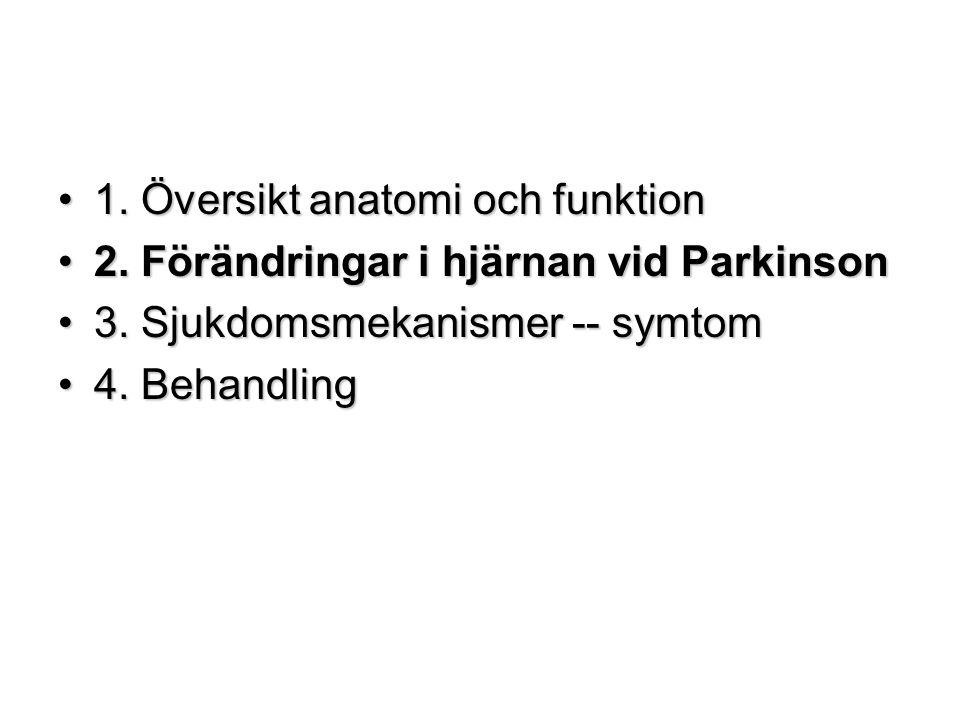 1. Översikt anatomi och funktion1. Översikt anatomi och funktion 2. Förändringar i hjärnan vid Parkinson2. Förändringar i hjärnan vid Parkinson 3. Sju