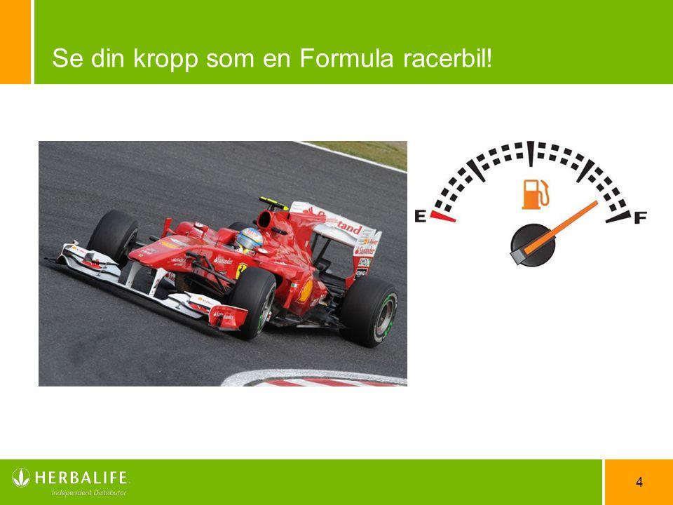 4 Se din kropp som en Formula racerbil!