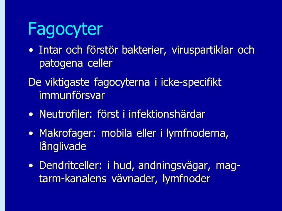 Fagocyter Intar och förstör bakterier, viruspartiklar och patogena cellerIntar och förstör bakterier, viruspartiklar och patogena celler De viktigaste