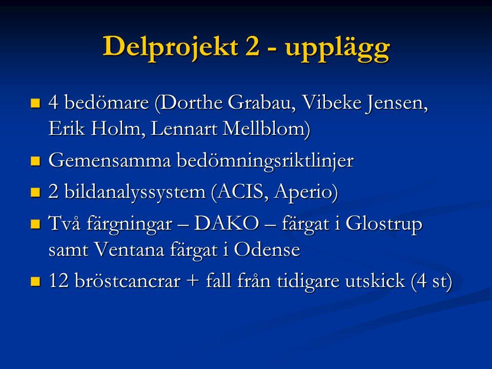 Delprojekt 2 - upplägg 4 bedömare (Dorthe Grabau, Vibeke Jensen, Erik Holm, Lennart Mellblom) 4 bedömare (Dorthe Grabau, Vibeke Jensen, Erik Holm, Len