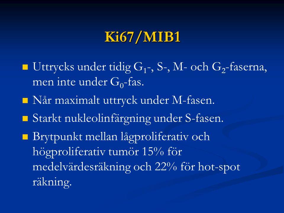 Ki67/MIB1 Uttrycks under tidig G 1 -, S-, M- och G 2 -faserna, men inte under G 0 -fas. Når maximalt uttryck under M-fasen. Starkt nukleolinfärgning u
