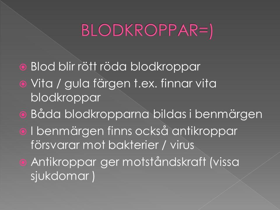  Blodet är organ i flytande form  250 000 blodplättar och 10 000 vita blodkroppar i en bloddroppe  Vita blodkroppar åker med blodet krossar/ äter bakterier