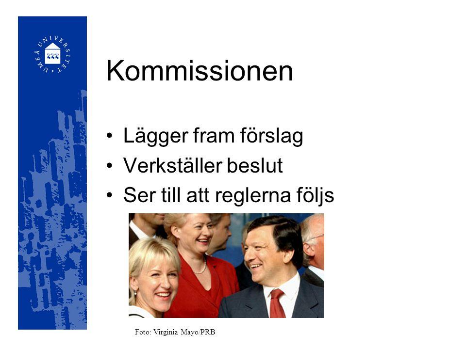 Andra källor EU-upplysningen (http://www.eu- upplysningen.se/)http://www.eu- upplysningen.se/ EU-kritik(http://www.eukritik.se/)