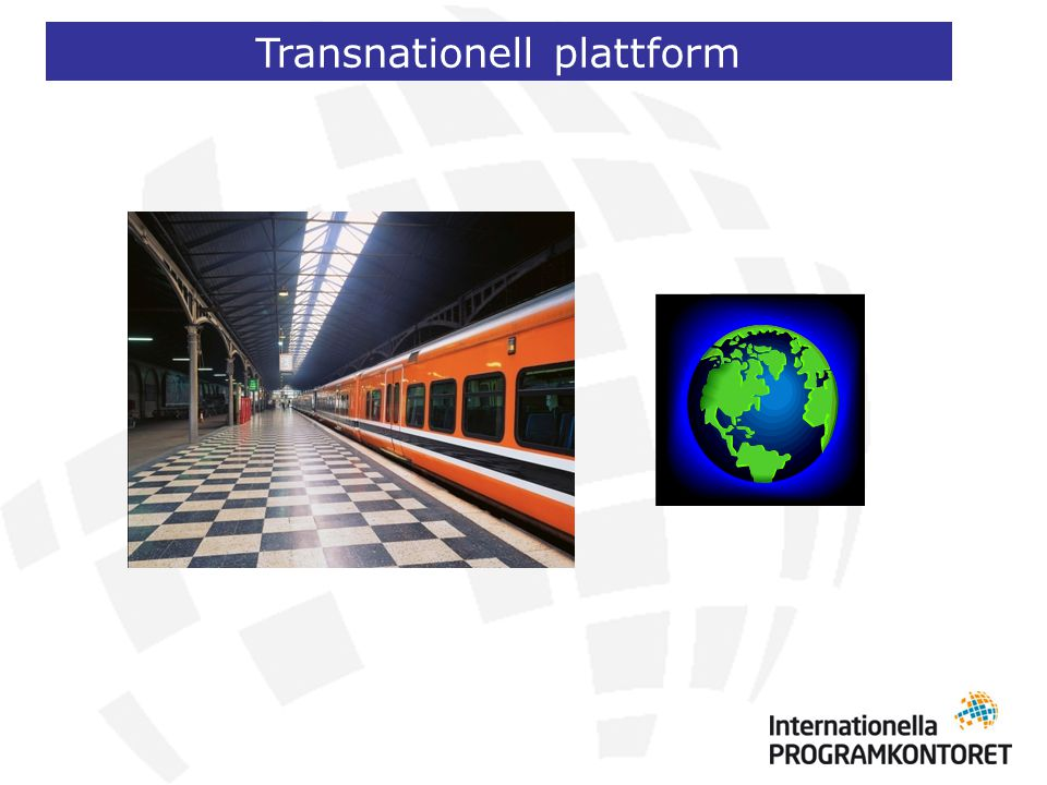 Transnationell plattform