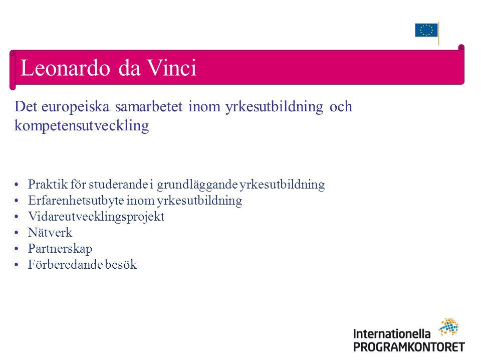 Leonardo da Vinci Praktik för studerande i grundläggande yrkesutbildning Erfarenhetsutbyte inom yrkesutbildning Vidareutvecklingsprojekt Nätverk Partnerskap Förberedande besök Det europeiska samarbetet inom yrkesutbildning och kompetensutveckling
