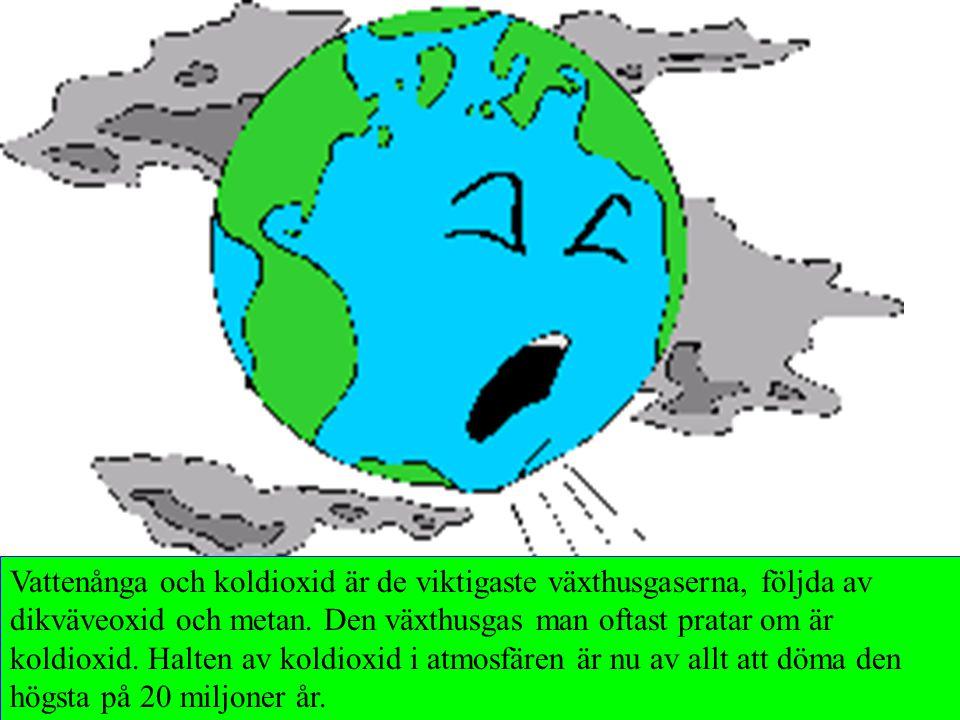 Vattenånga och koldioxid är de viktigaste växthusgaserna, följda av dikväveoxid och metan. Den växthusgas man oftast pratar om är koldioxid. Halten av