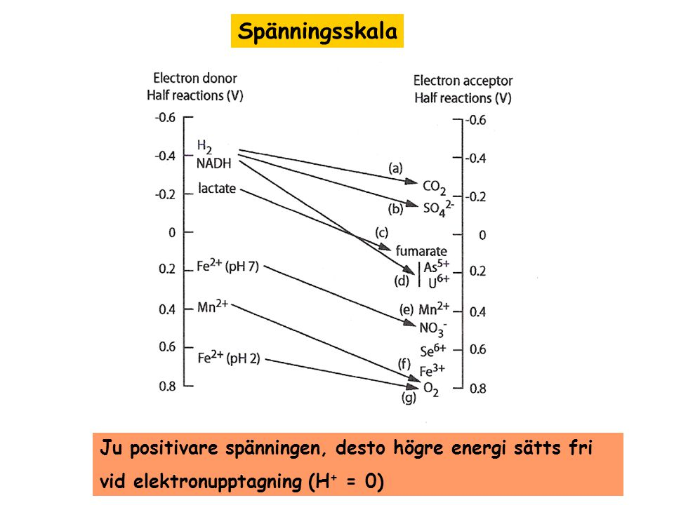 Spänningsskala Ju positivare spänningen, desto högre energi sätts fri vid elektronupptagning (H + = 0)