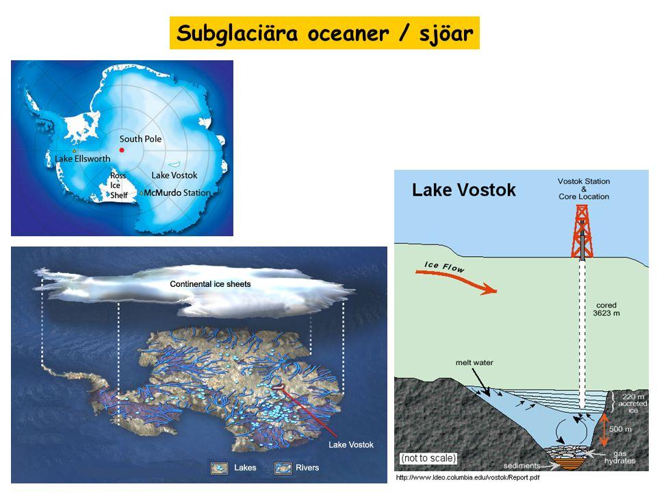 Subglaciära oceaner / sjöar
