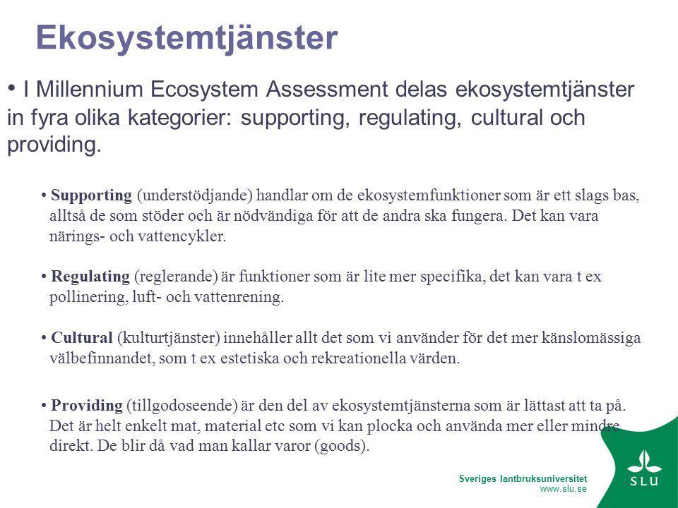 Sveriges lantbruksuniversitet www.slu.se Ekosystemtjänster I Millennium Ecosystem Assessment delas ekosystemtjänster in fyra olika kategorier: supporting, regulating, cultural och providing.