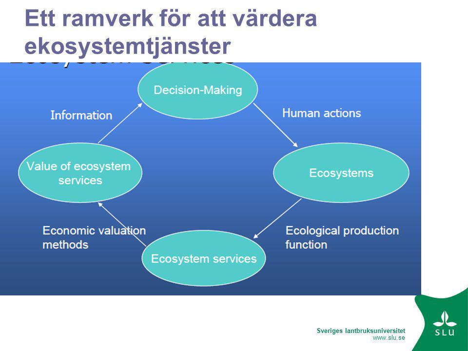 Sveriges lantbruksuniversitet www.slu.se Ett ramverk för att värdera ekosystemtjänster