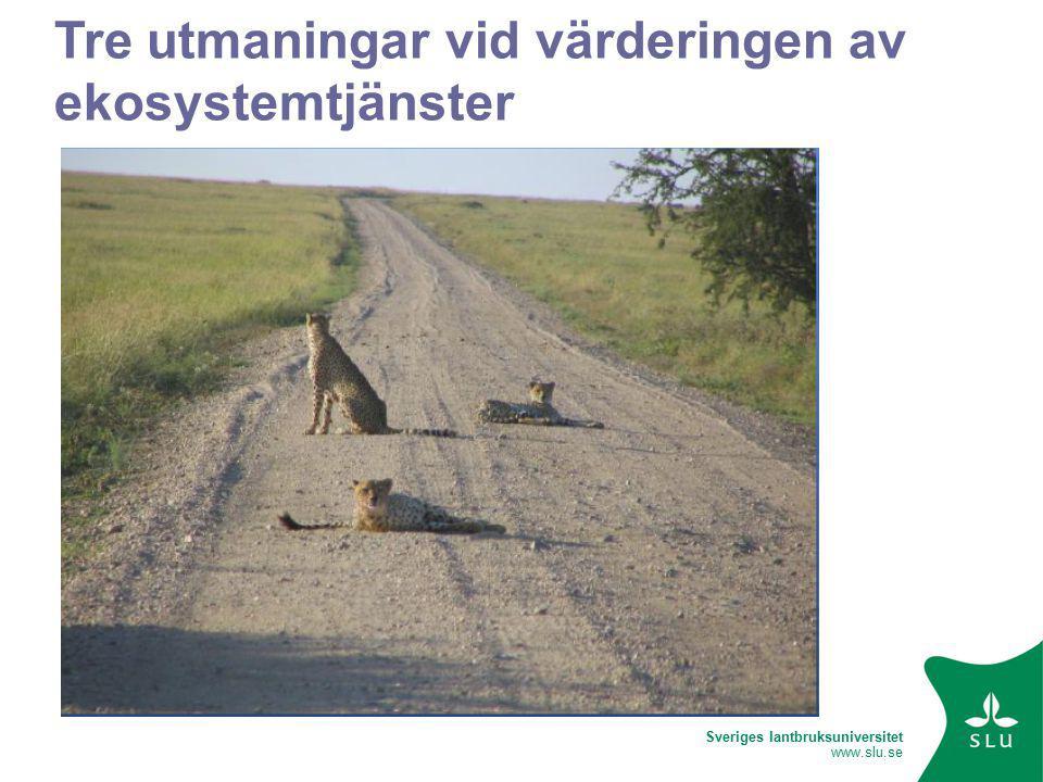 Sveriges lantbruksuniversitet www.slu.se Tre utmaningar vid värderingen av ekosystemtjänster