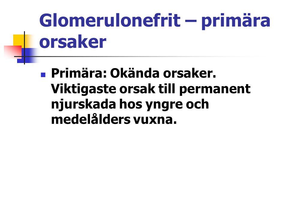 Glomerulonefrit – primära orsaker Primära: Okända orsaker. Viktigaste orsak till permanent njurskada hos yngre och medelålders vuxna.