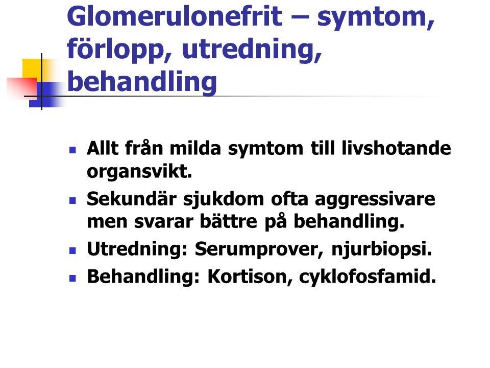 Glomerulonefrit – symtom, förlopp, utredning, behandling Allt från milda symtom till livshotande organsvikt. Sekundär sjukdom ofta aggressivare men sv
