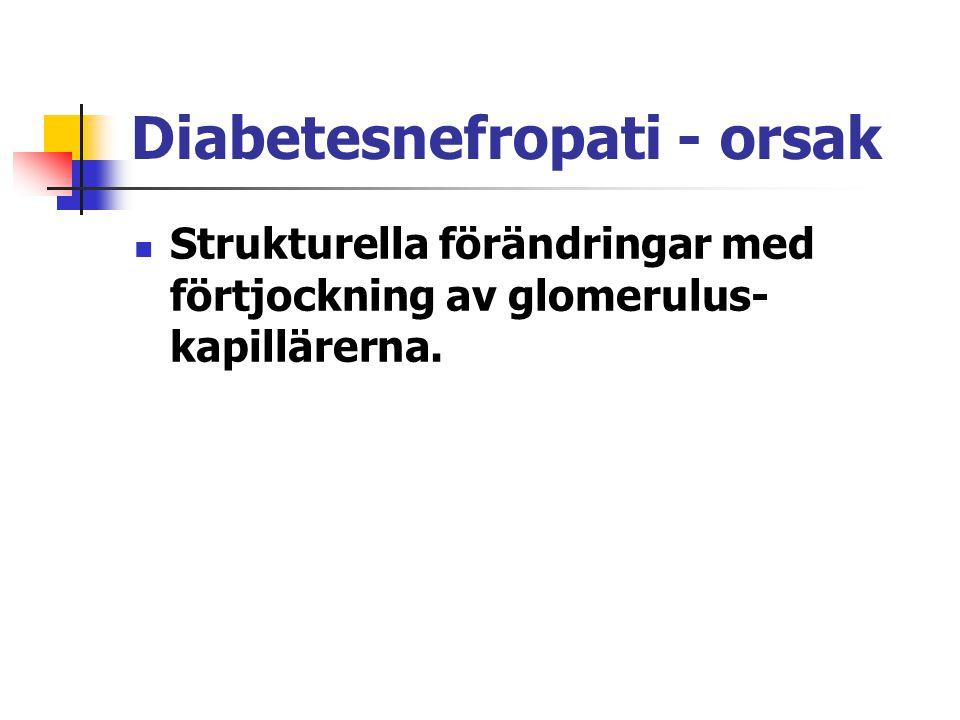 Diabetesnefropati - orsak Strukturella förändringar med förtjockning av glomerulus- kapillärerna.