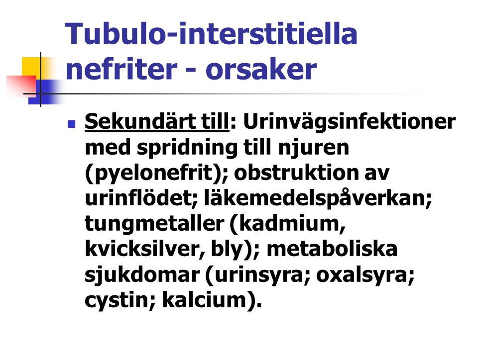 Tubulo-interstitiella nefriter - orsaker Sekundärt till: Urinvägsinfektioner med spridning till njuren (pyelonefrit); obstruktion av urinflödet; läkem