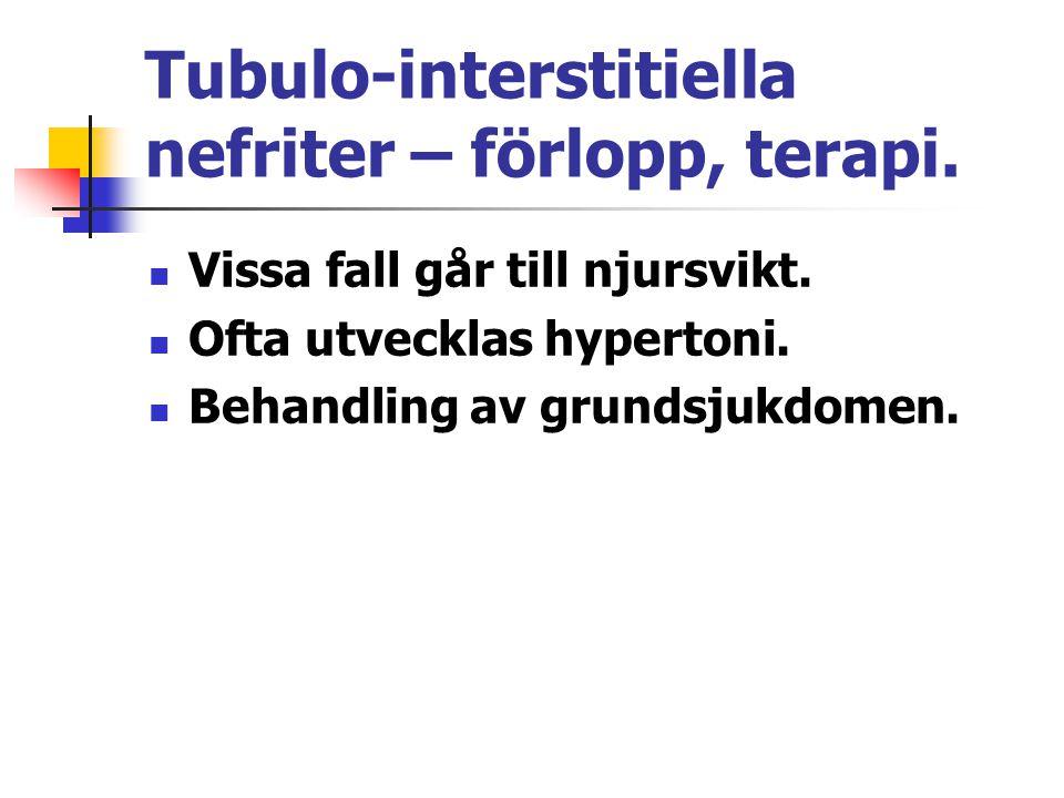 Tubulo-interstitiella nefriter – förlopp, terapi. Vissa fall går till njursvikt. Ofta utvecklas hypertoni. Behandling av grundsjukdomen.