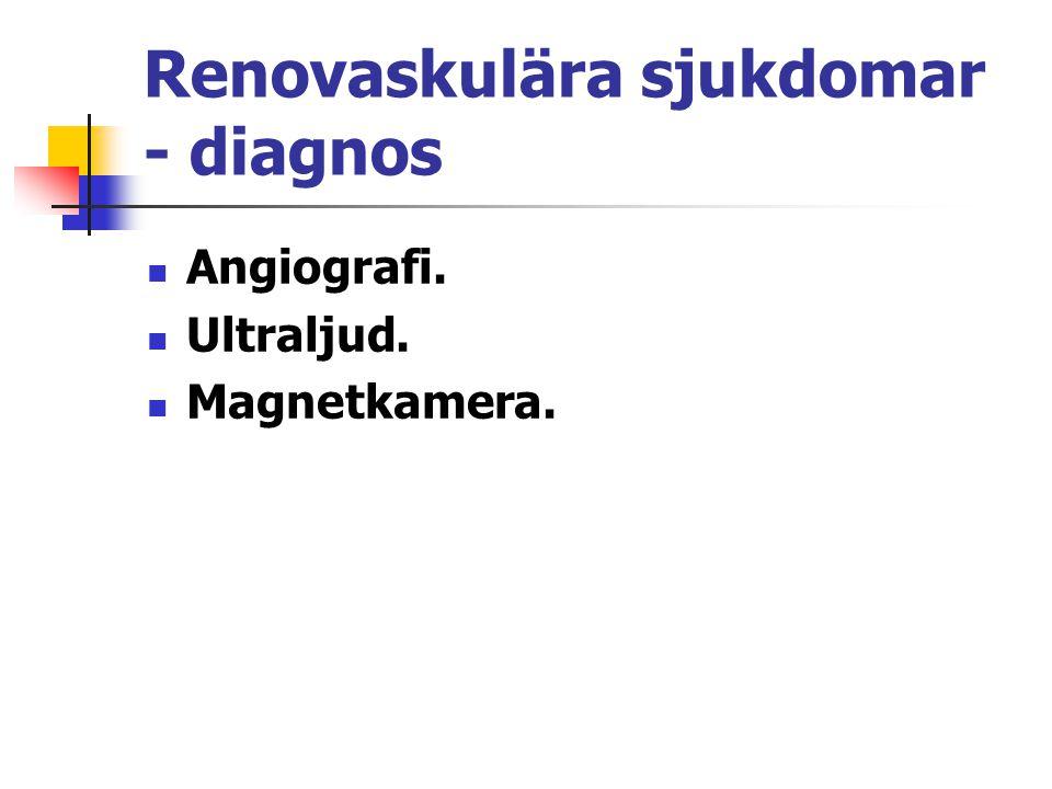 Renovaskulära sjukdomar - diagnos Angiografi. Ultraljud. Magnetkamera.