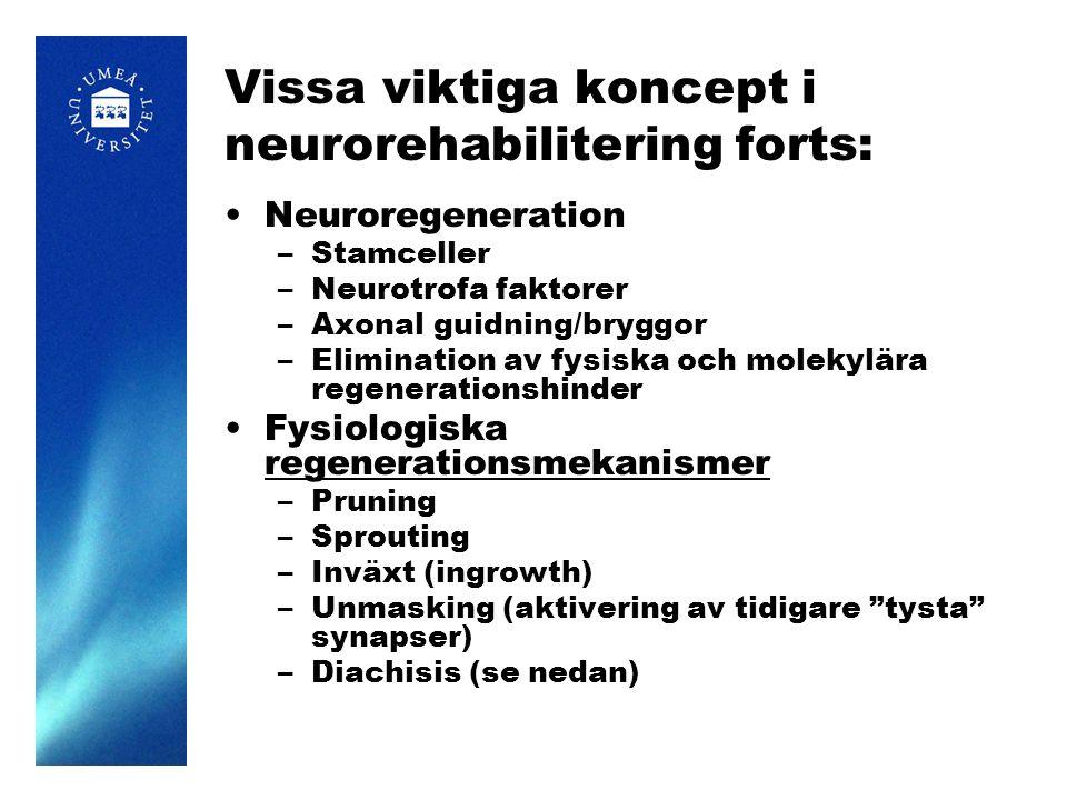 Vissa viktiga koncept i neurorehabilitering forts: Neuroregeneration –Stamceller –Neurotrofa faktorer –Axonal guidning/bryggor –Elimination av fysiska