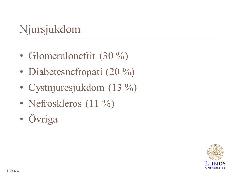 Njursjukdom Glomerulonefrit (30 %) Diabetesnefropati (20 %) Cystnjuresjukdom (13 %) Nefroskleros (11 %) Övriga SNR 2012