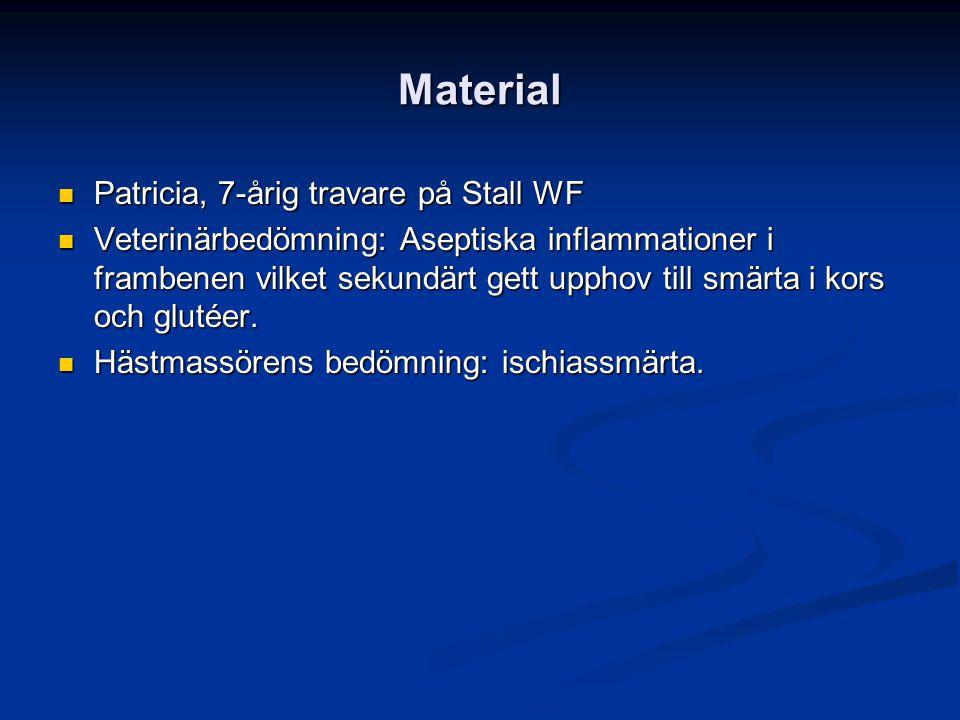 Material Patricia, 7-årig travare på Stall WF Patricia, 7-årig travare på Stall WF Veterinärbedömning: Aseptiska inflammationer i frambenen vilket sekundärt gett upphov till smärta i kors och glutéer.