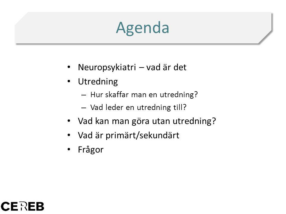 Agenda Neuropsykiatri – vad är det Utredning – Hur skaffar man en utredning? – Vad leder en utredning till? Vad kan man göra utan utredning? Vad är pr
