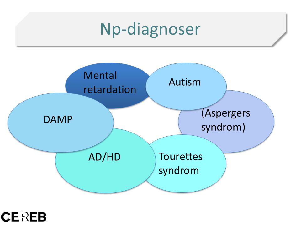 Np-diagnoser Mental retardation Autism (Aspergers syndrom) DAMP Tourettes syndrom AD/HD