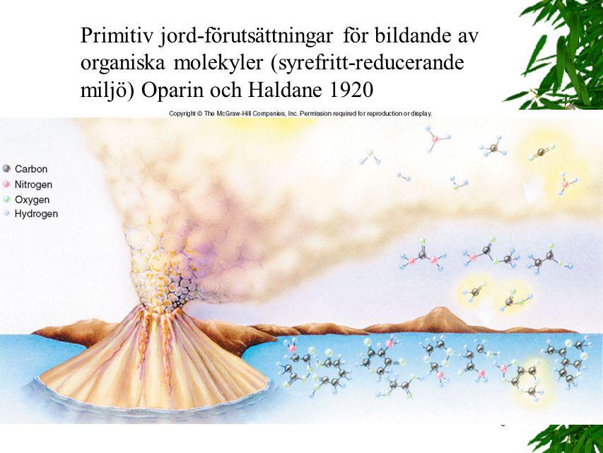8 Primitiv jord-förutsättningar för bildande av organiska molekyler (syrefritt-reducerande miljö) Oparin och Haldane 1920