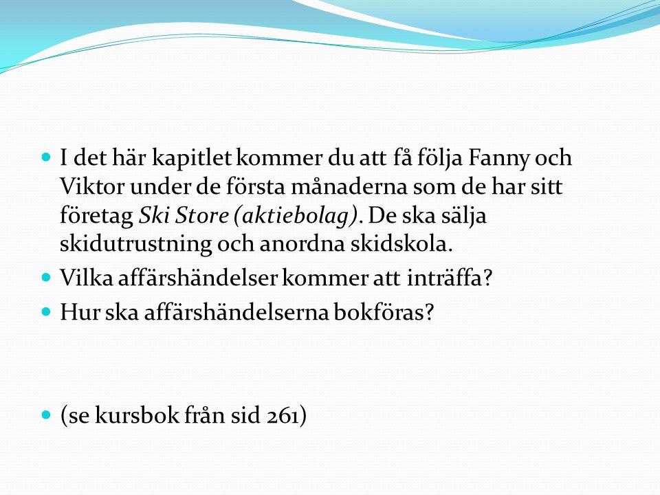 I det här kapitlet kommer du att få följa Fanny och Viktor under de första månaderna som de har sitt företag Ski Store (aktiebolag). De ska sälja skid
